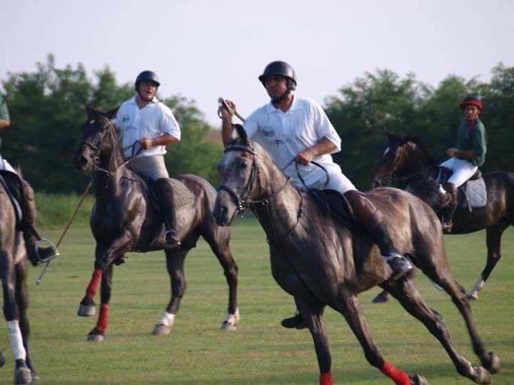 Polo Romania
